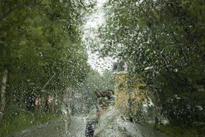 Дождливый июнь