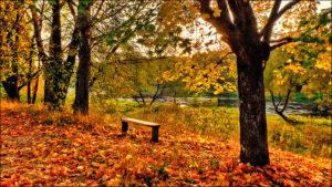 Осенняя ода