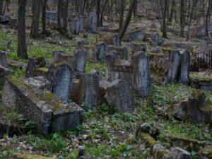 Чижовское кладбище. Описание сюжета.