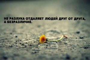 Стих про некролог Вконтакте